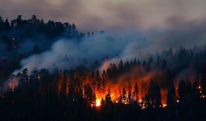 Заминувшие сутки влесном фонде вИркутской области ликвидировано три пожара