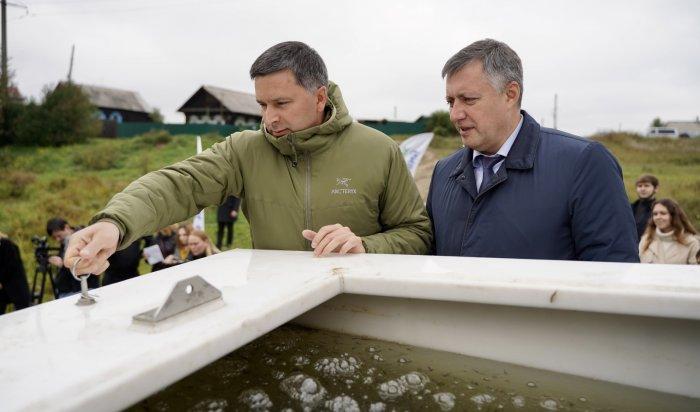 Сто тысяч мальков сазана выпустили в Братское водохранилище