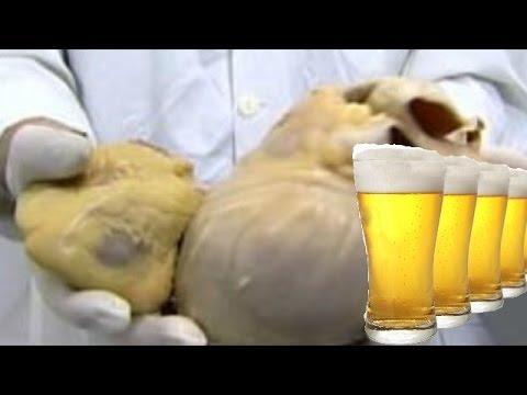 Вредно ли каждый день пить пиво